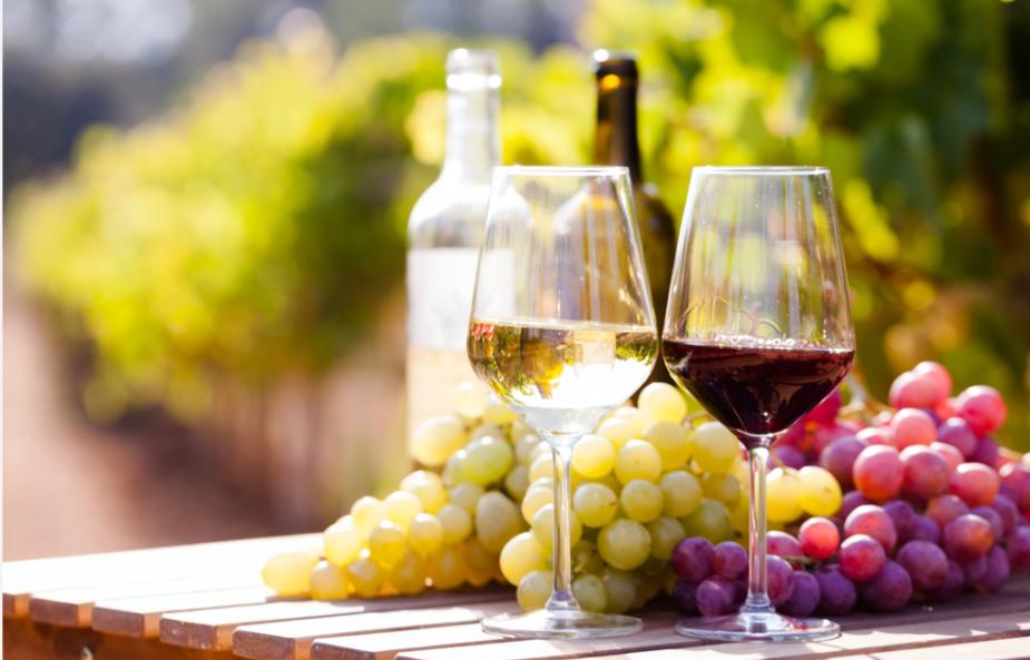 赤ワインと白ワインの違いって何?意外と語れないワインの特徴を解説